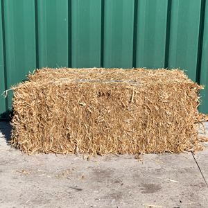 Pea Straw Bale