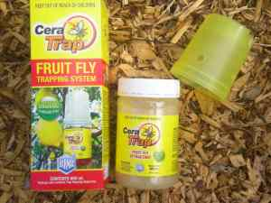 Cera-Trap Fruit Fly Bait & Trap