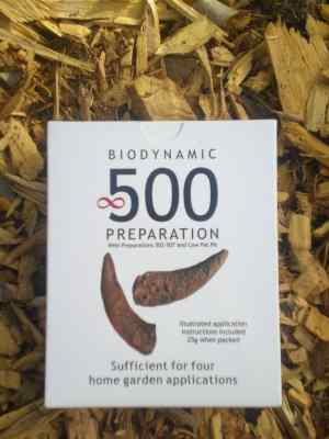 BD 500 preparation kit