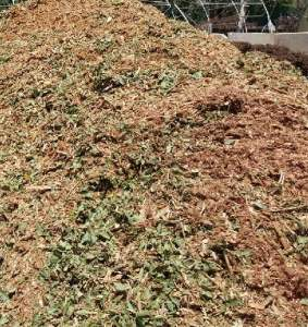 Recycled Tree Prunings Mulch (RTP) Bulk