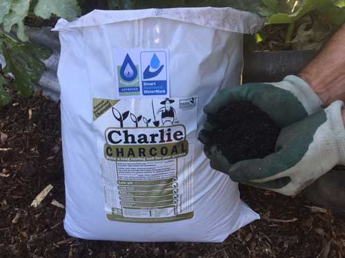 charlie charcoal